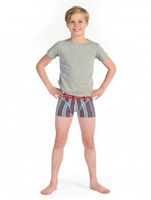Boys Boxer 2-Pack Dark Blue/Stripe