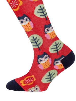 Owl Knee-High
