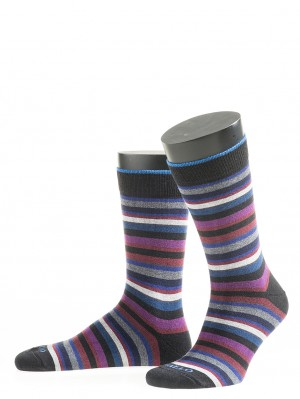 Multi Color Micro Stripe