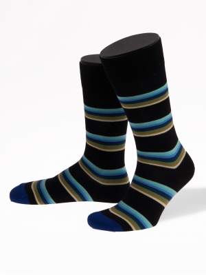 Lion Stripe Socks