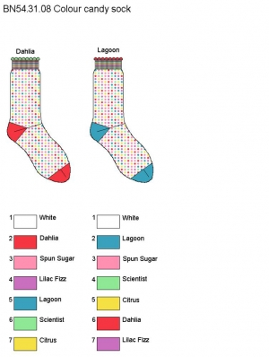 Colour Candy Sock